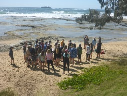 Year 11 Biology Shelly Beach Excursion